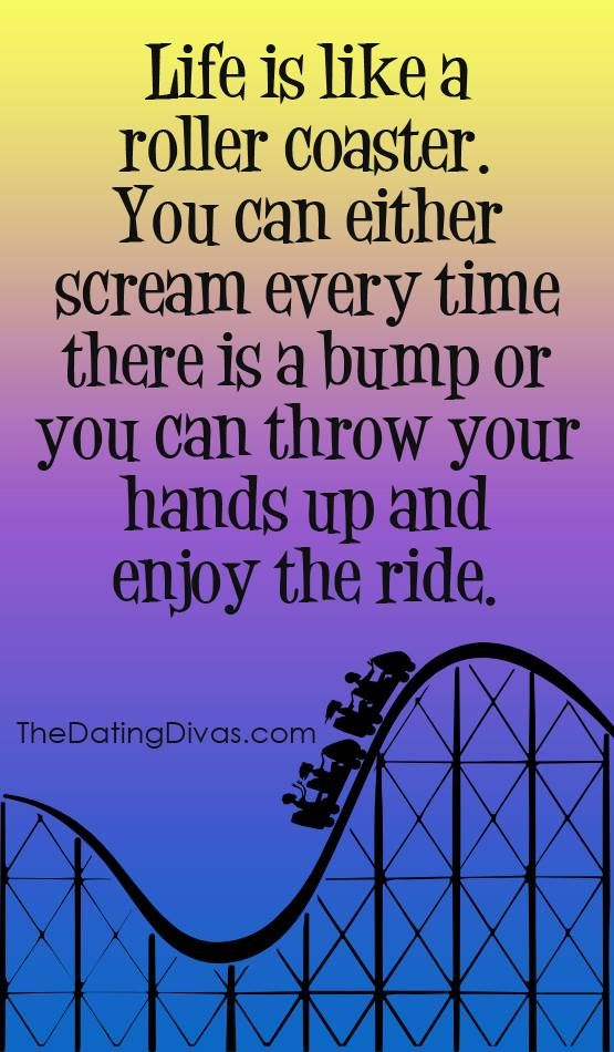 Life is like a roller coaster. You can either scream every ...