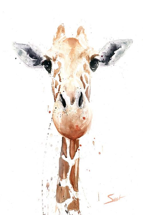 GIRAFFE PAINTING  giraffe watercolor animal art by SignedSweet