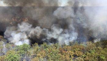 Чрезвычайно высокие температуры и сильные ветры привели к распространениюпожаров на большой территории в штате Новый Южный Уэльс в Австралии. Их жертвой стала
