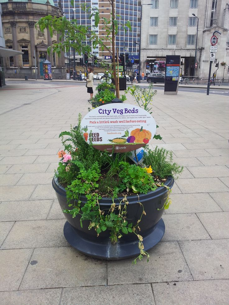 A new addition to the Leeds landscape which makes me love it even more - community veg beds on my way to work!