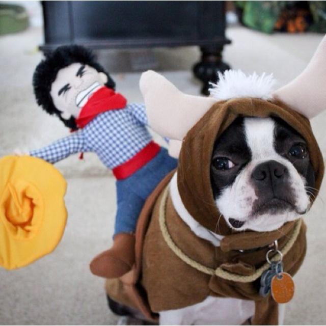 Future pup costume.