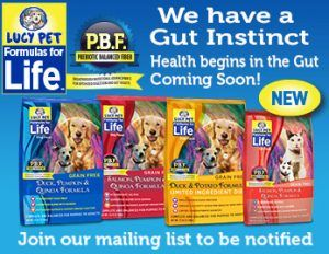 We are so confident that you will love our Formulas for Life we are happy to offer a free sample for you to try. Become part of the Lucy Pet community, signup for our email list and we will send you money-saving coupons.