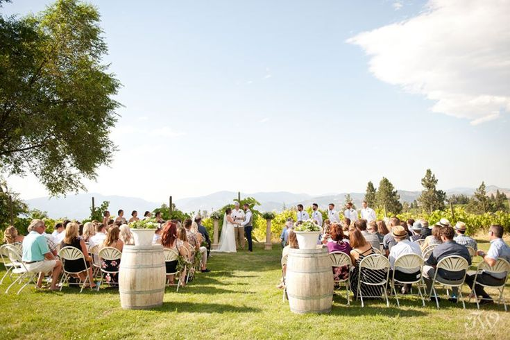 Vineyard wedding ceremony in Kelowna captured by Tara Whittaker Photography   Kelowna wedding photographer