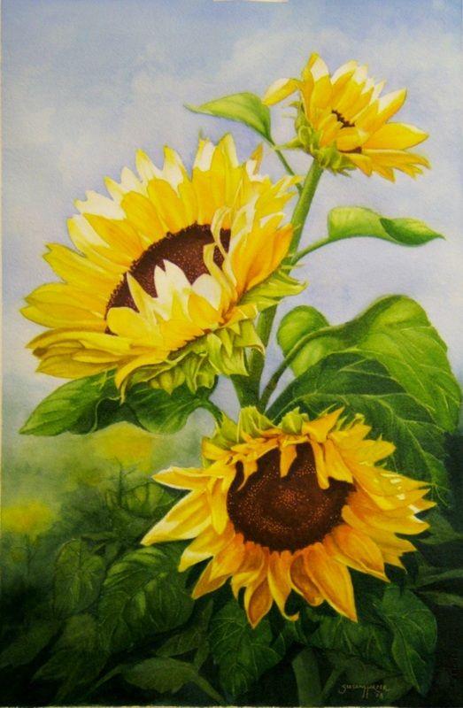 Floral - The Art of Susan Walsh Harper