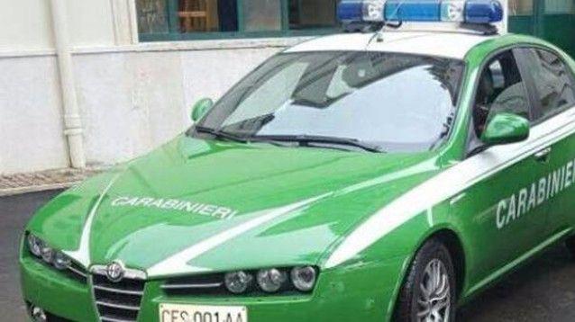 Le auto di servizio dei Carabinieri diventano verdi #GuardiaForestale #Carabinieri #auto #NotiziedalMondo