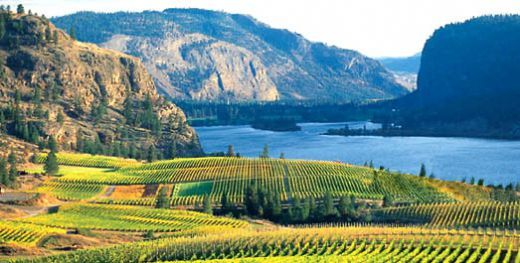 """Kelowna, British Columbia  """"Where do Canadians go on vacation? Kelowna, BC. In the heart of the Canadian Rockies is the Okanagan Valley, a river-valley that has some of Canada's best weather. Warm in the summer and mild in the winter; the most you can ask for in the Great White North."""" (Hub Pages)"""
