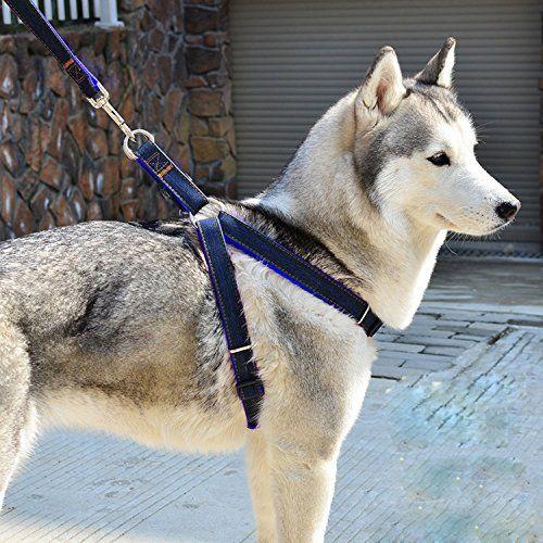 Aodoor Softgeschirr mit Leine Brustgeschirr Hunde Geschirr Sicherheitsgeschirr Denim Leine f�r Haustiere Hunde verstellbare(L Blau?