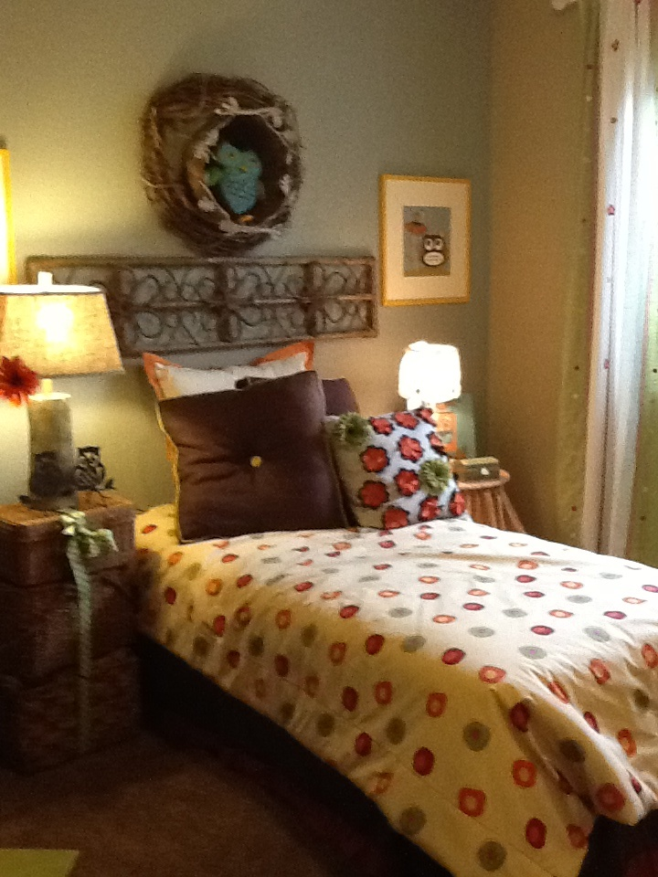 girl's bedroom with owl decorations  model homes  pinterest