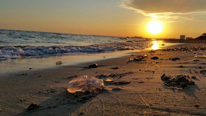Guten Morgen vom Warnemünder #Ostseestrand :-) Mal wieder ein wunderschöner #Sonnenaufgang über der #Ostsee  #Strand #Sommer #sommertag #Warnemünde #spätsommer #meer #ocean #qualle #quallen @hotelneptun