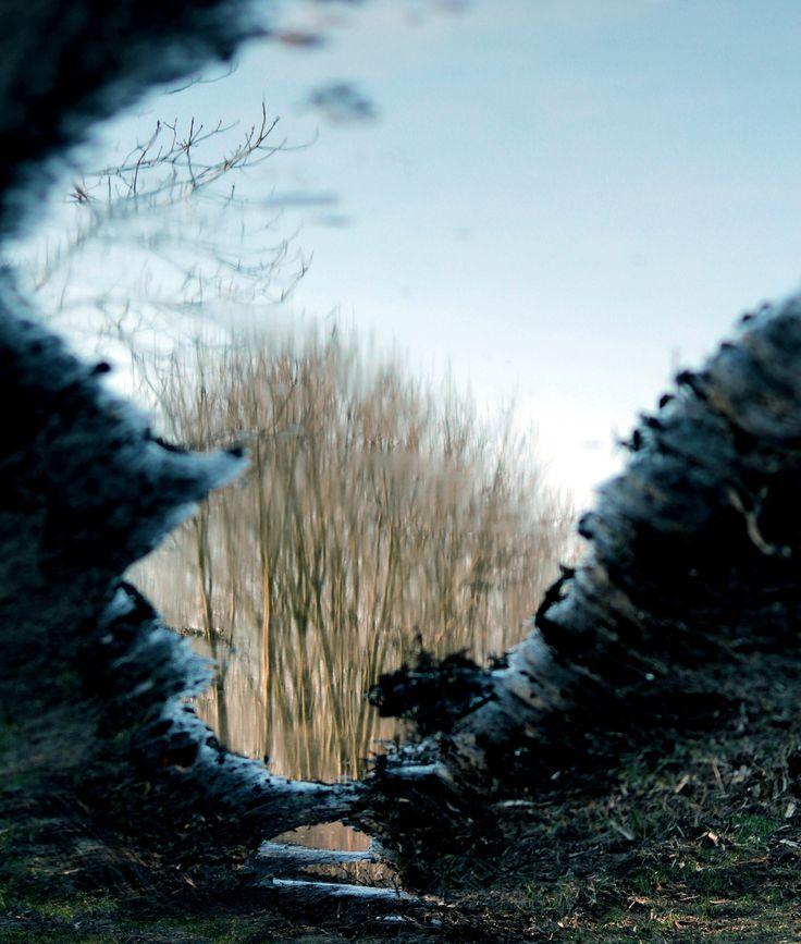 mirror by Enikő Pécz on 500px