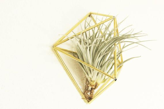 Himmeli Wall Ornament, Indoor planter, Geometric, Mobile, Minimalistic, Air plant, Brass sculpture, Wall planter, Air plant holder, Gift
