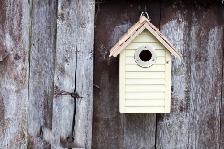 This Gardman Beach Hut Nest Box is a treat for the eyes and for the birds #Birdhouse! #summerlovin