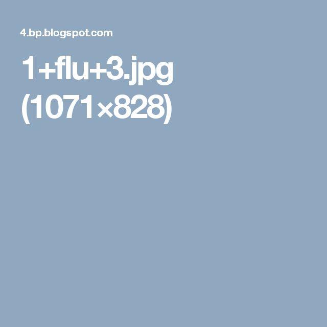 1+flu+3.jpg (1071×828)