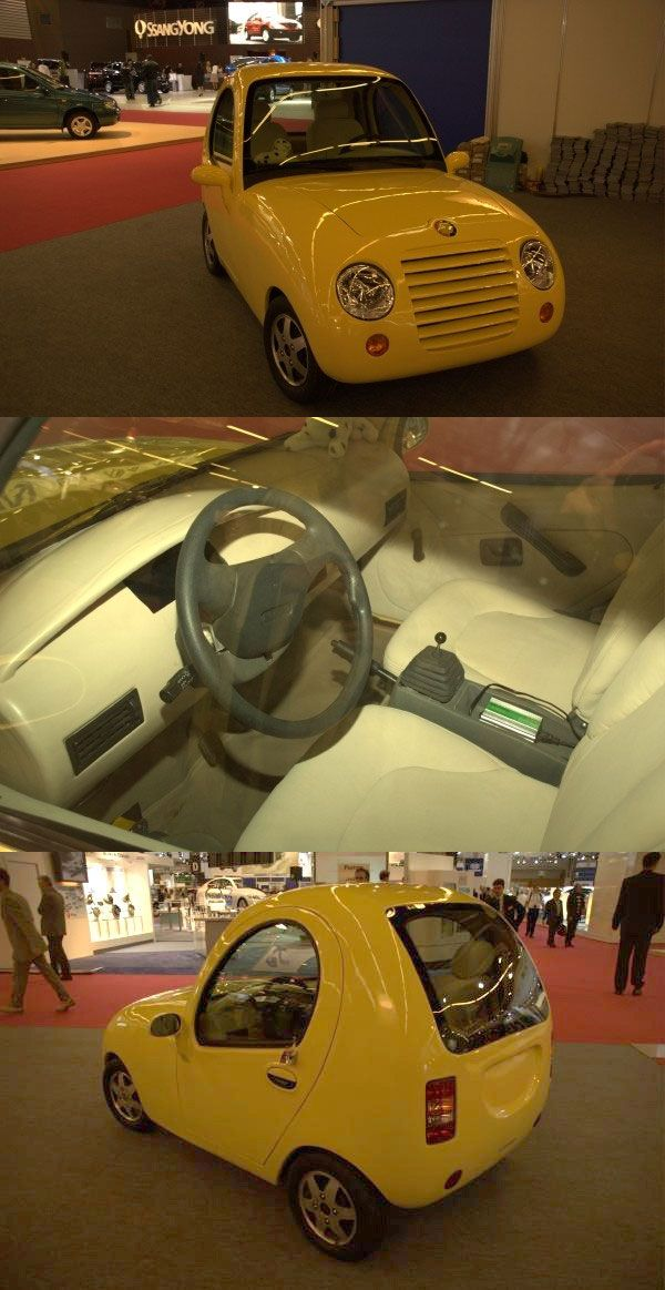 STRANGE LITTLE CHINESE ELECTRIC CAR - 2009