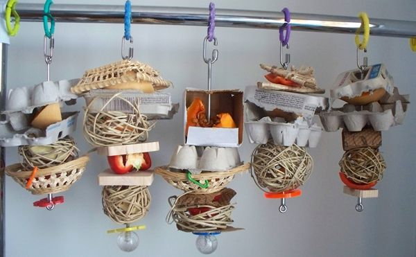 More examples of what you can make with stainless steel skewers. It is easy to thread vegetables and fruit along with shreddable material onto skewers and there you have it, practically instant foraging toys.