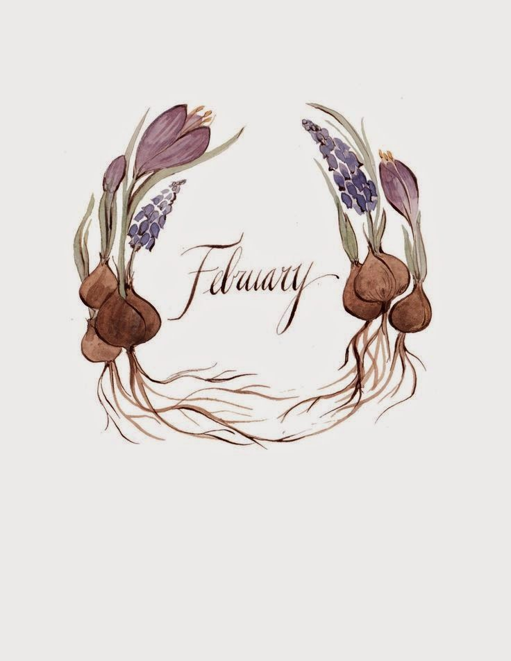 Bem vindo Fevereiro!