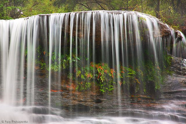 Weeping Rock Waterfall, Blue Mountains Australia