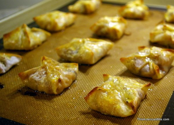 Baked Wontons with Salmon Filling - Easy Dinner Recipe - This American Bite