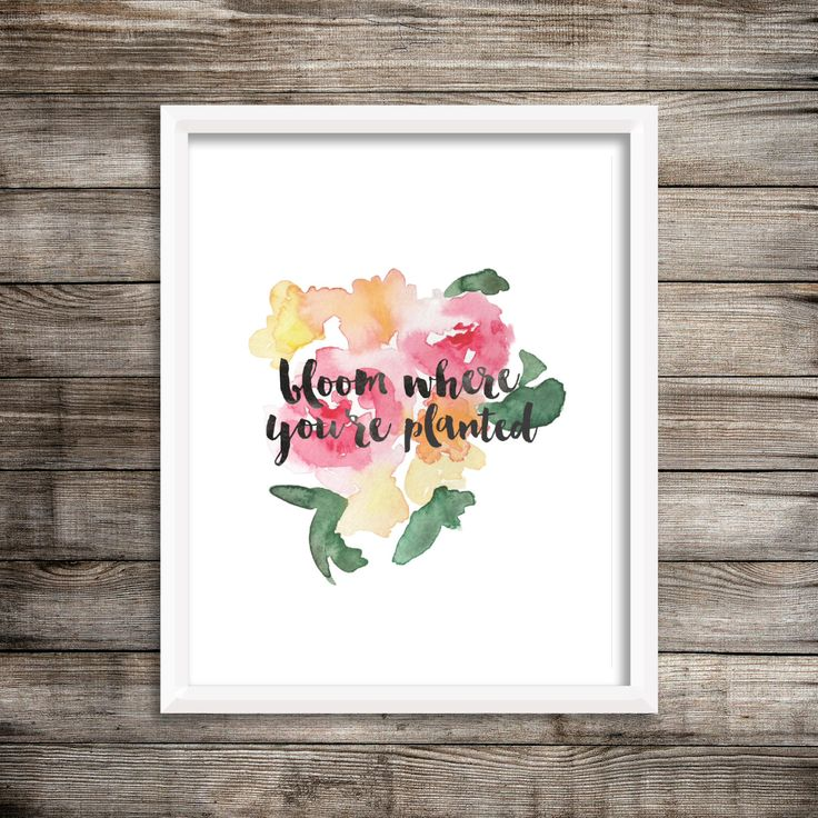 Bloom Where You're Planted - Watercolor Printable (Digital Print File) by LiveALittleWilder on Etsy https://www.etsy.com/uk/listing/254474206/bloom-where-youre-planted-watercolor