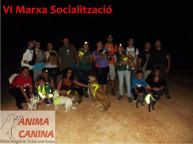 VI Marcha de Socialización , esta vez nocturna, a la Font del Patge, #ontinyent