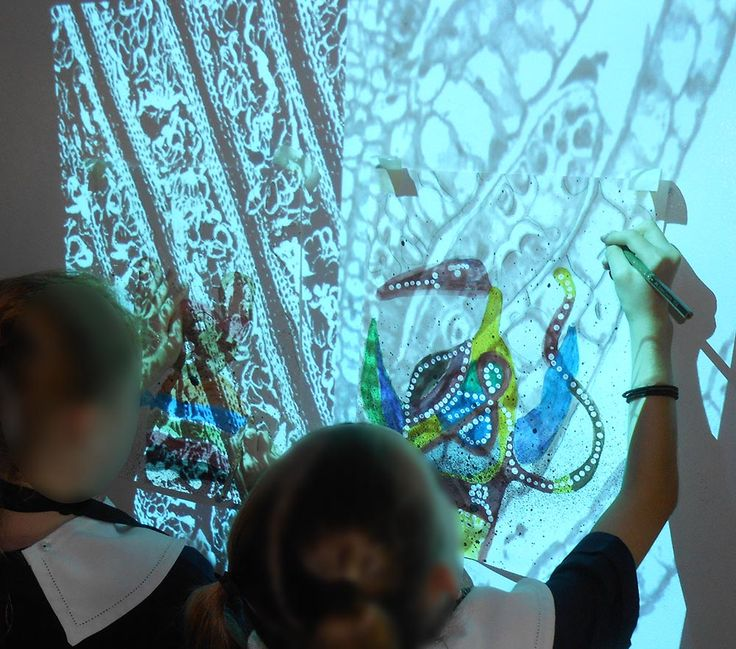 Bunyip in the Waterhole - imaginative drawing looking at stories of bunyips. Layered mixed media drawing: background traced from microscopic images projected on wall. Year 3