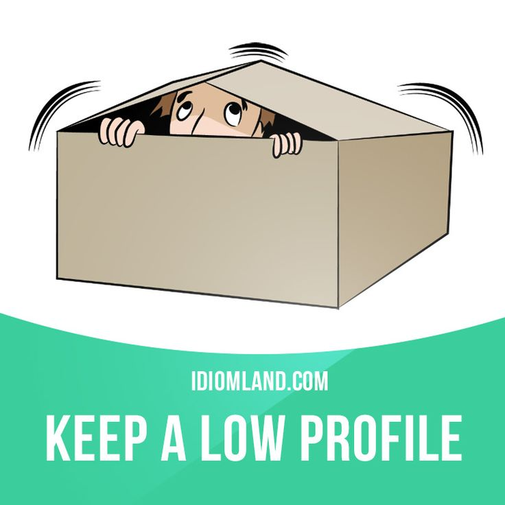 """""""Keep a low profile"""" means """"to avoid attracting attention to yourself"""". Example: He's been keeping a low profile at work ever since his argument with Peter."""