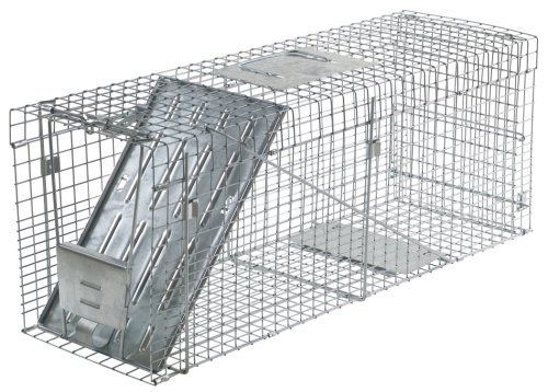Havahart 1089  Collapsible One-Door Live Animal Cage Trap for Raccoon, Stray Cat,  Groundhog, Opossum, and Armadillos by Havahart. $44.99. Collapsible design folds flat for space saving storage. Made in the U.S.A.. Mesh openings on Havahart traps are smaller than competing traps of comparable size to prevent escapes and stolen bait. ideal for catching raccoons, stray cats, woodchucks, groundhogs, opossums, armadillos and similar-size nuisance animals.. Solid doors and ...