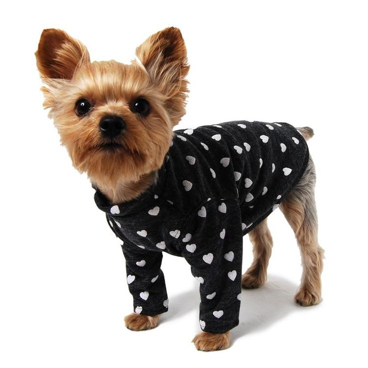 15 best coton crew wishes images on pinterest pets doggies and hearts on grey dog tee solutioingenieria Images