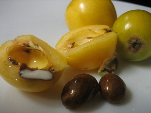 loquat fruit best healthy fruits to eat