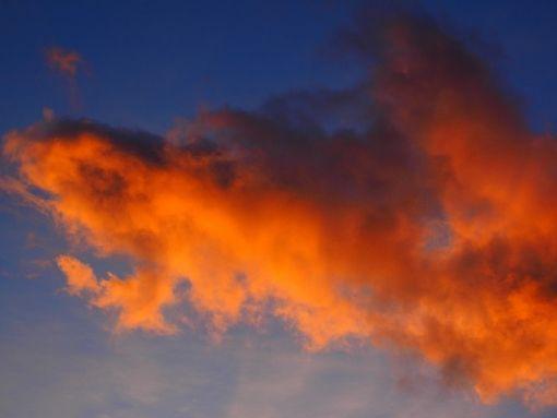 Ajánljuk: Ők is az időjárástól függnek, http://kertinfo.hu/ok-is-az-idojarastol-fuggnek/, ezekben a témakörökben:  #Méhészet, írta: Szépzöld