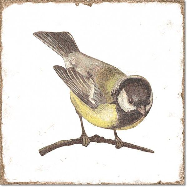 Kolekcja Forli - płytki ścienne Forli Birds Decor Mix 15x15