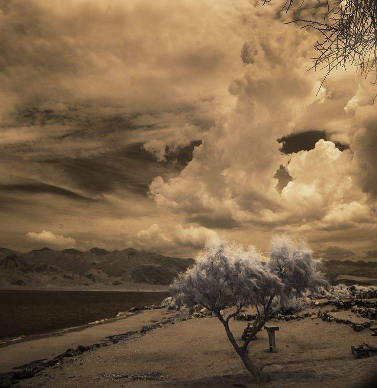 Bill Gracey posted a photo:  This was taken in Mexico at Bahia de Los Angeles in Baja California, Mexico back in 2015 as a summer storm was rolling in. Dramatic sky.  This is an infrared image taken with my converted Nikon D300 camera. I've been taking infrared photographs for more than 13 years, and with a total of 3 different cameras. It's much easier to take infrared images digitally that it was in the film days. If you like this look, I have an album of infrared photographs, creatively…