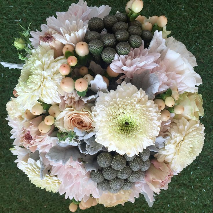 Cream, white, apricot, pink and grey pastel coloured vintage, traditional, structured style bridal bouquet of gerbera, dusty miller, hypericum berries, lissies and other mixed flowers. Created and designed by Madison in Bloom Floral Design. www.facebook.com/madisoninbloom www.instagram.com/madisoninbloom www.madisoninbloom.com.au