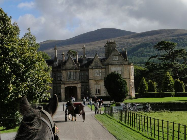 Muckross House in Killarney National Park, County Kerry, Ireland. We took a ride around the grounds in one of these jaunting carts pulled by an Irish cob - *so* much fun!!