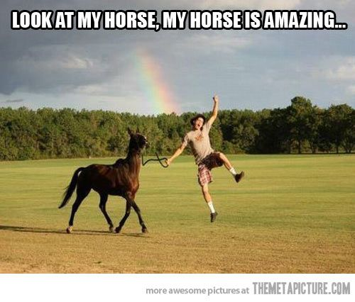 Y Horse Is Amazing 1000+ images about Hor...