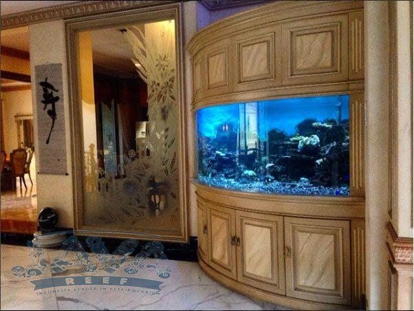 ukuran aquarium air laut dapat menyesuaikan rumah anda