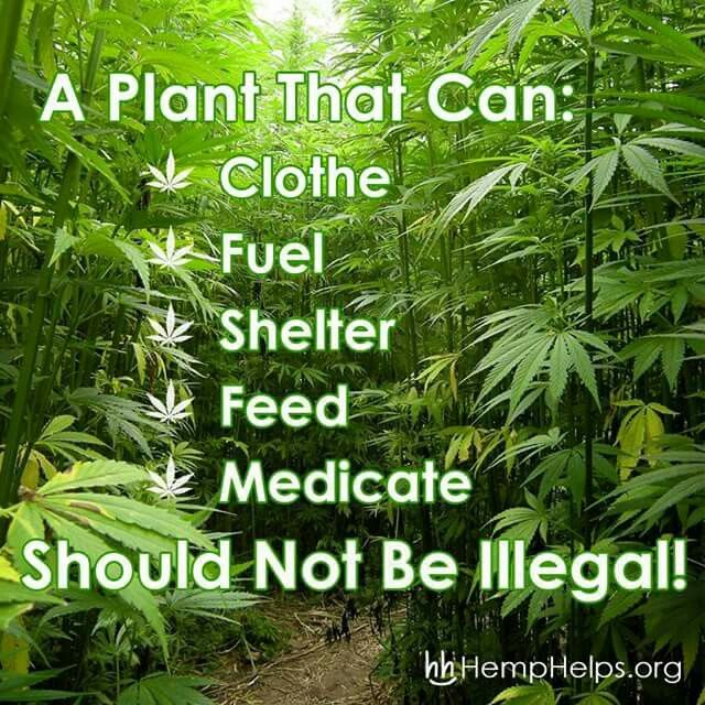 So true! I just don't understand how alcohol can b legal & not weed it blows my mind!!!