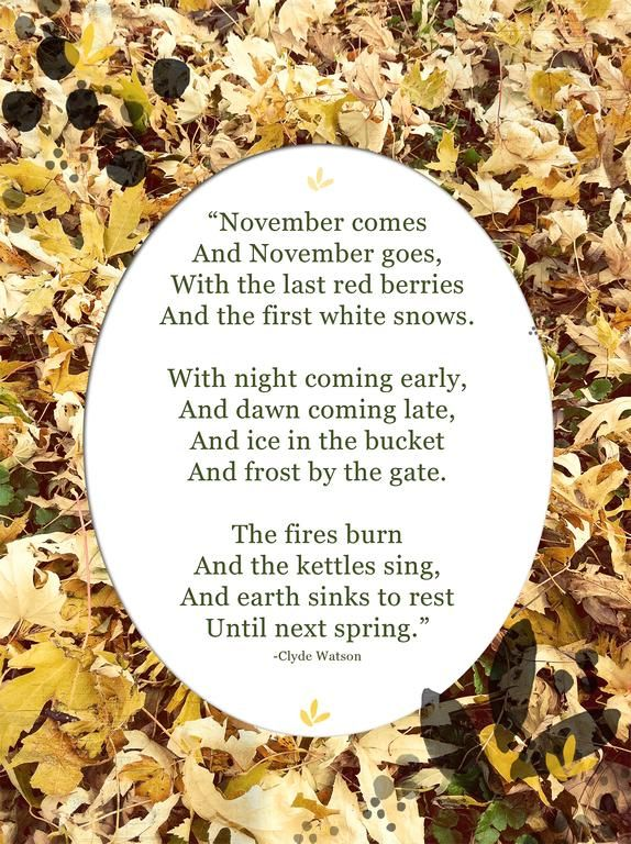 November by Clyde Watson (or May for the Southern Hemisphere!)