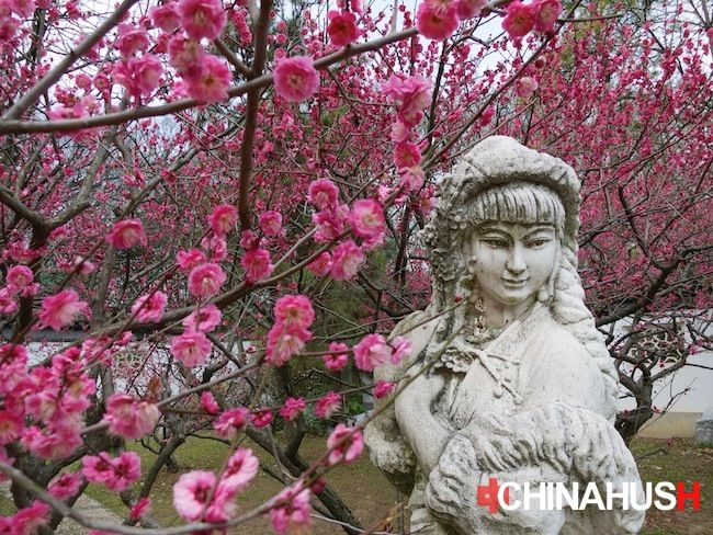 A statue of a famous girl within the plum blossoms. See all the pictures here: http://www.chinahush.com/2014/03/07/nanjing-plum-blossom-festival/