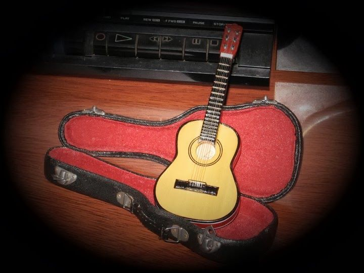 Learn to play the guitar.