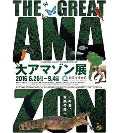 福岡市博物館 特別展示室にて6月25日9月4日の期間大アマゾン展が開催されますよ アマゾン川流域に生息する生物の多様性をテーマにアマゾン固有の生態系そしてそれをどのように先住民族が生活に利用してきたかなどを紹介します 最新のK映像を駆使してアマゾンを体験できるそうです tags[福岡県]