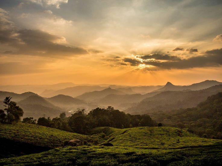 Sunset over the Munnar hills in India
