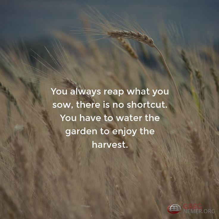 You always reap what you sow, there is no shortcut. You have to water the garden to enjoy the harvest.  http://gregnemer.com/