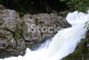 River flowing from the Riwaka Resurgence, Nelson, NZ Royalty Free Stock Photo
