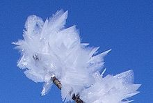 Feather ice on the plateau near Alta, Norway. The crystals form at temperatures below −30 °C (i.e. −22 °F).