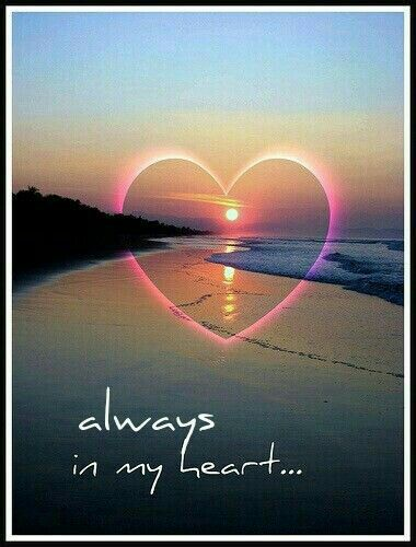 Good Night My Sweet Angel Sister Pinafriends! So many of you have such heavy hearts and so I ask you to leave those worries with God and have a good nights rest! He will take care of You! I have my Roro here so I'm going to snuggle with him! Sleep well! Much Love, ¥!ck!£ xo
