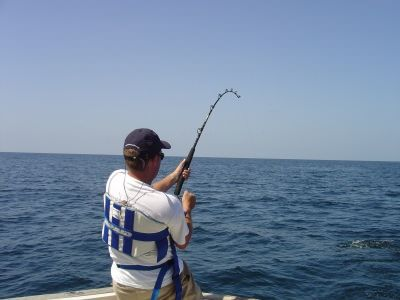 17 best ideas about fishing reels for sale on pinterest | fishing, Hard Baits
