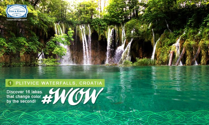 Unearth the natural beauty of Plitvice waterfalls, and discover an array of wildlife, from wolves, bears, deer, wildcats and wild boar to lynx. #WorldOfWaterfalls #travel #CnK
