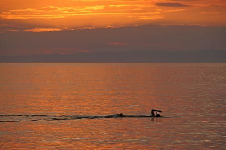 summer Photo by peter halas � National Geographic Your Shot