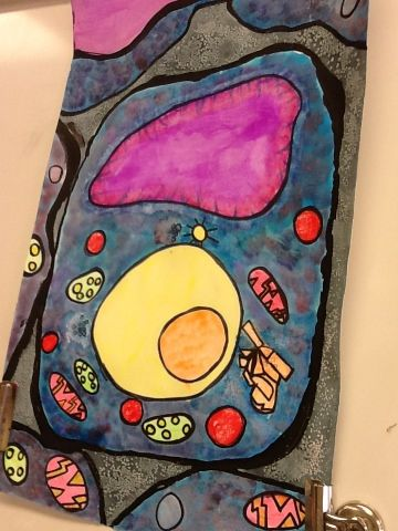 Art at Becker Middle School: Watercolor cell collaborative project. Art and science combine...what a great lesson!